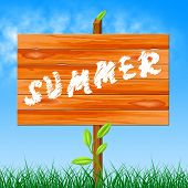 Warm Summer Means Season Environment And Hot