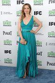 LOS ANGELES - MAR 01:  Julie Delpy arrives to the Film Independent Spirit Awards 2014  on March 01,