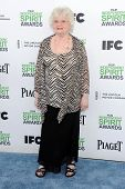 LOS ANGELES - MAR 01:  June Squibb arrives to the Film Independent Spirit Awards 2014  on March 01,