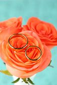 Wedding rings on wedding bouquet, close-up, on bright background