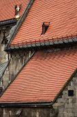 pic of red roof tile  - Red tiled roofs with a gold cross and stone walls of the cathedral in the center of Bratislava Slovakia closeup - JPG