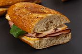 picture of sandwich  - Grilled Ham and Cheese Panini Sandwich - JPG