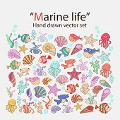 stock photo of marines  - Vector marine life hand drawn set with various sea inhabitants - JPG