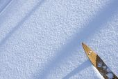 foto of nordic skiing  - Newly fallen snow on the ground - JPG