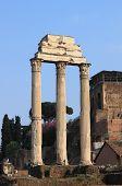 Ruins of the Giulia Basilica