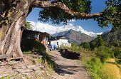 Life Under Himalayas - Dhaulagiri Himal