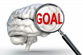 Goal Word On Magnifying Glass And Human Brain