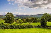 Green countryside landscape in Cumbria