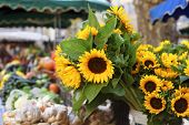image of farmers market vegetables  - Farmers market in France with vegetables and sunflowers.