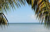 picture of west indies  - France - JPG