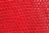 Texture of red leatherette closeup. Repeating pattern.