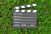 Junta de badajo de cine sobre la verde hierba entre floración pequeñas flores de color púrpura