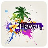 image of hawaiian flower  - Tropical abstract background - JPG