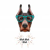 Doberman Dog In Glasses. Geek Dog. Vector Illustration Isolated On White Background. poster