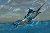 Blue Marlin Jump