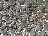 Beach 055