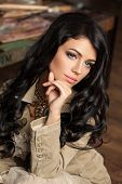 Perfect Young Woman Brunette. Makeup. Brunette Hair poster