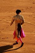 Torero In The Bullfighting Arena