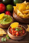 mexican guacamole and salsa dip, nachos tortilla chips poster