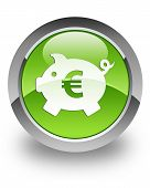 Money box glossy icon (euro)