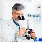 senior male researcher carrying out scientific research in a lab using a microscope (shallow DOF; color toned image)