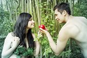 picture of adam eve  - Adam and Eve are going to eat an fruit - JPG