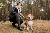 Brunette girl in casualwear sitting on squats during chill with purebred beagle puppy in the forest  poster