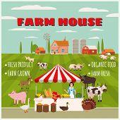 Farm House Farmer Women Sell Harvest Products Grocery On Eco Farm Organic. Farm Animals Goose, Turke poster