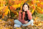 Knowledge For Early Age. Cute Small Girl With Book Sit On Autumn Leaves. Adorable Little Child Get K poster