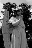 picture of cherubim  - A old angel statue in hazlehurst were i live - JPG