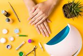 Composition For Nail Care, Female Young Hands, French Manicure, Gel Polish, Lamp For Nails And Equip poster