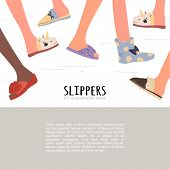Set Of Different Slippers. Illustration With Slippers On The Feet poster