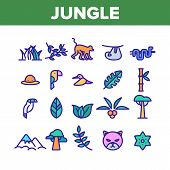 Jungle Forest Collection Elements Icons Set Vector Thin Line. Jungle Animal And Plants, Monkey And S poster
