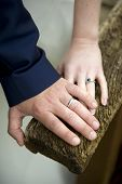 Wedding Rings Of A Newlywed Couple