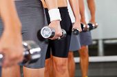 group of people with dumbbells in gym
