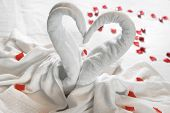 White Two Towel Swans On The Bed poster