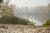 Morning On The River Early Morning Reeds Mist Fog And Water Surface On The River. Autumn River Fog poster