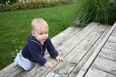 foto of crawl  - baby is crawling and climbing the stairs outside - JPG