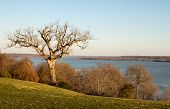 stock photo of martha  - President George Washington home at Mount Vernon in Virginia wtih view of Potomac from house - JPG