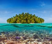 foto of undersea  - Coral reef and the Island  - JPG