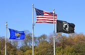 Usa - Wisconsin And Pow Flags
