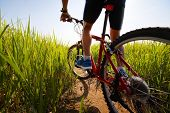 image of bike path  - Young rider cycling through a green lush meadow in sunny day - JPG