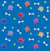 Colorful Bones and Paws Pattern