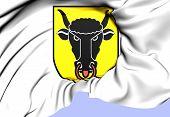 Uri Coat Of Arms, Switzerland.
