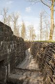 picture of world war one  - Bayernwald Trenches world war one flanders Belgium - JPG