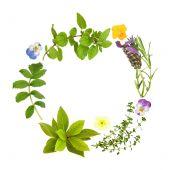 Kruid blad en bloemen Garland
