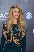 LAS VEGAS - APR 6:  Shakira at the 2014 Academy of Country Music Awards - Arrivals at MGM Grand Garden Arena on April 6, 2014 in Las Vegas, NV
