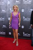 LAS VEGAS - APR 6:  Linda Thompson at the 2014 Academy of Country Music Awards - Arrivals at MGM Gra