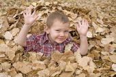 Boy In Leaves Hands Up