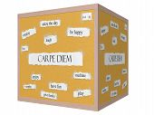 Carpe Diem 3D Cube Corkboard Word Concept